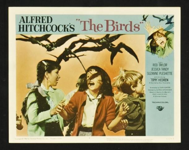 5666thebirds